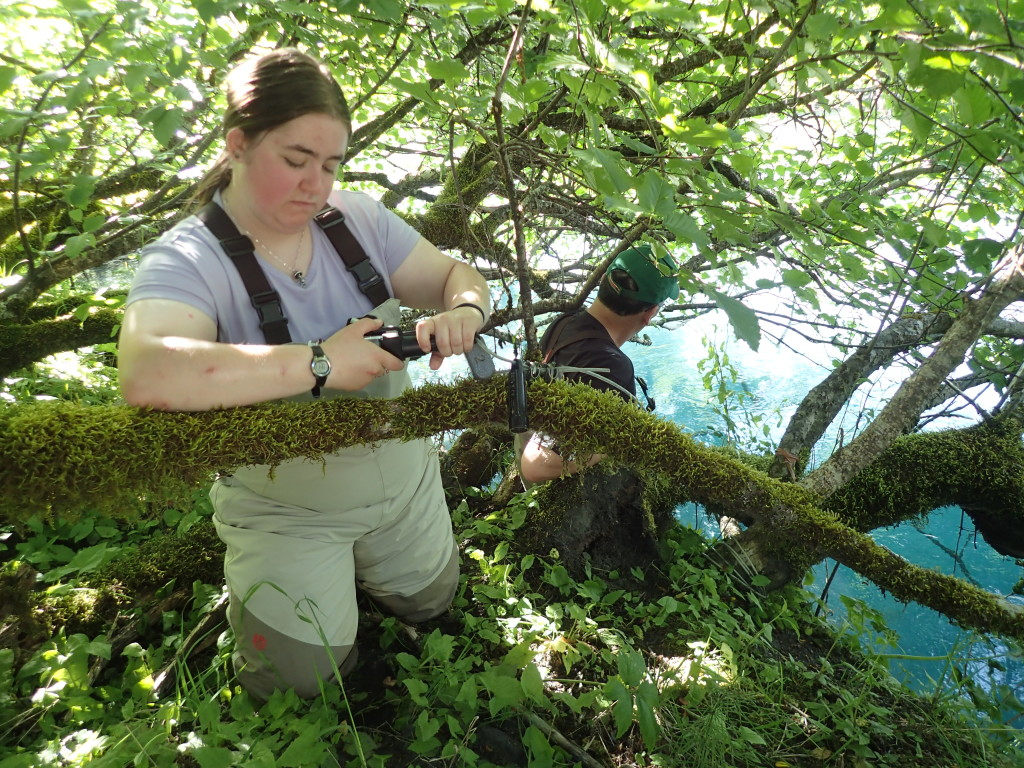 Annie Looman downloads data from a water temperature logger at Salonie Creek.